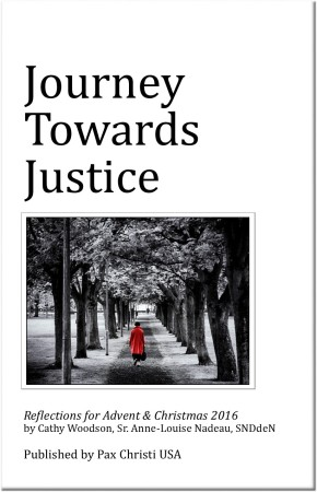 Journey Towards Justice