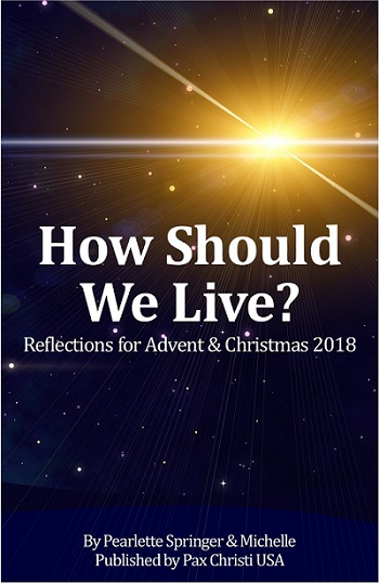 How should we live ACTUAL COVER 3dcart pic